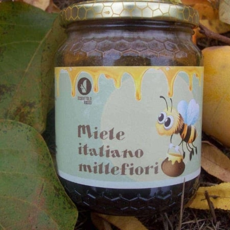 italian multiflower honey by scoiattolo rosso farm that grown and sell online piedmont hazelnuts